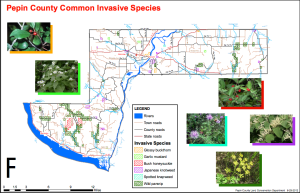 Pepin County Common Invasive Species