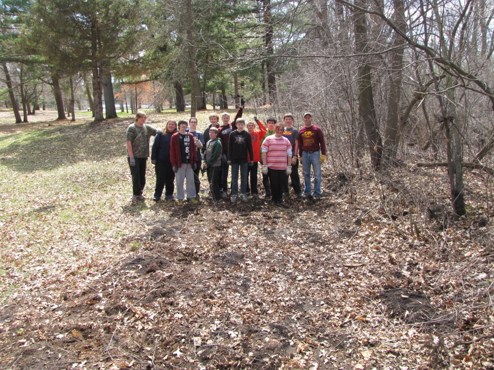 Area cleared of buckthorn!